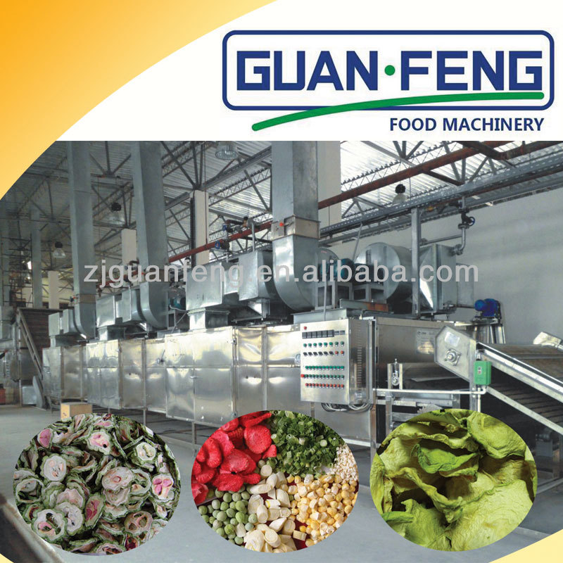 High Efficient Belt Type Dehydrator Electric Food Dryer Machine