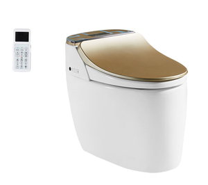 Chinese bathroom WC Western automatic smart toilet