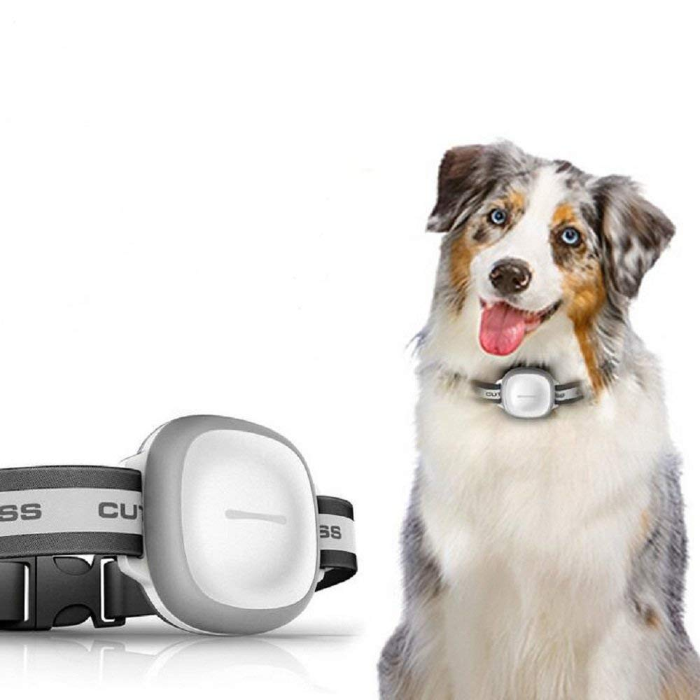 JYRSHKM Pet Tracker Gps,Pet Tracker Waterproof,Dog Collar with GPS Tracker & Activity Monitor,GPS/LBS/WIFI/GPRS intelligent positioning mode