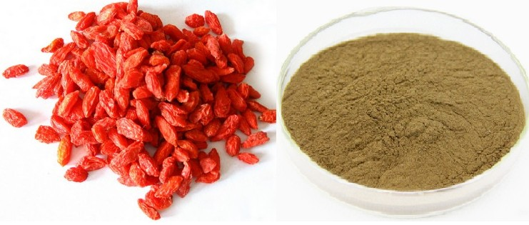 Pure Natural Chinese Wolfberry Extract