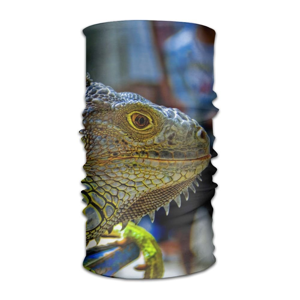 PengMin Green-iguana-reptiles-nature-lizard-wallpaper Unisex Fashion Quick-drying Microfiber Headdress Outdoor Magic Scarf Neck Neck Scarf Hooded Scarf Super Soft Handle