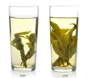 Healthy Broadleaf Holly Leaf Ku Ding Tea Bitter Tea