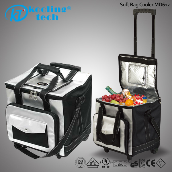 Travel Freezer Bag Whole Cooler Cooling Box In Car
