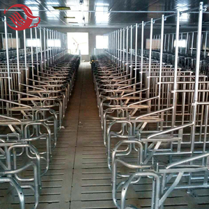 Customized Size Livestock Stall / Pig Farming Sow Gestation Crates Individual Sow Pen For Sale