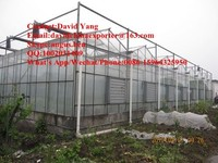 Multi-Span Agricultural Greenhouses Type and Large Size electric palm tree