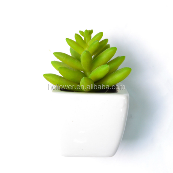 Mini Artificial Jade Succulent In Pot