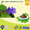 High quality pure Belladonna Extract, Scopolamine 1%