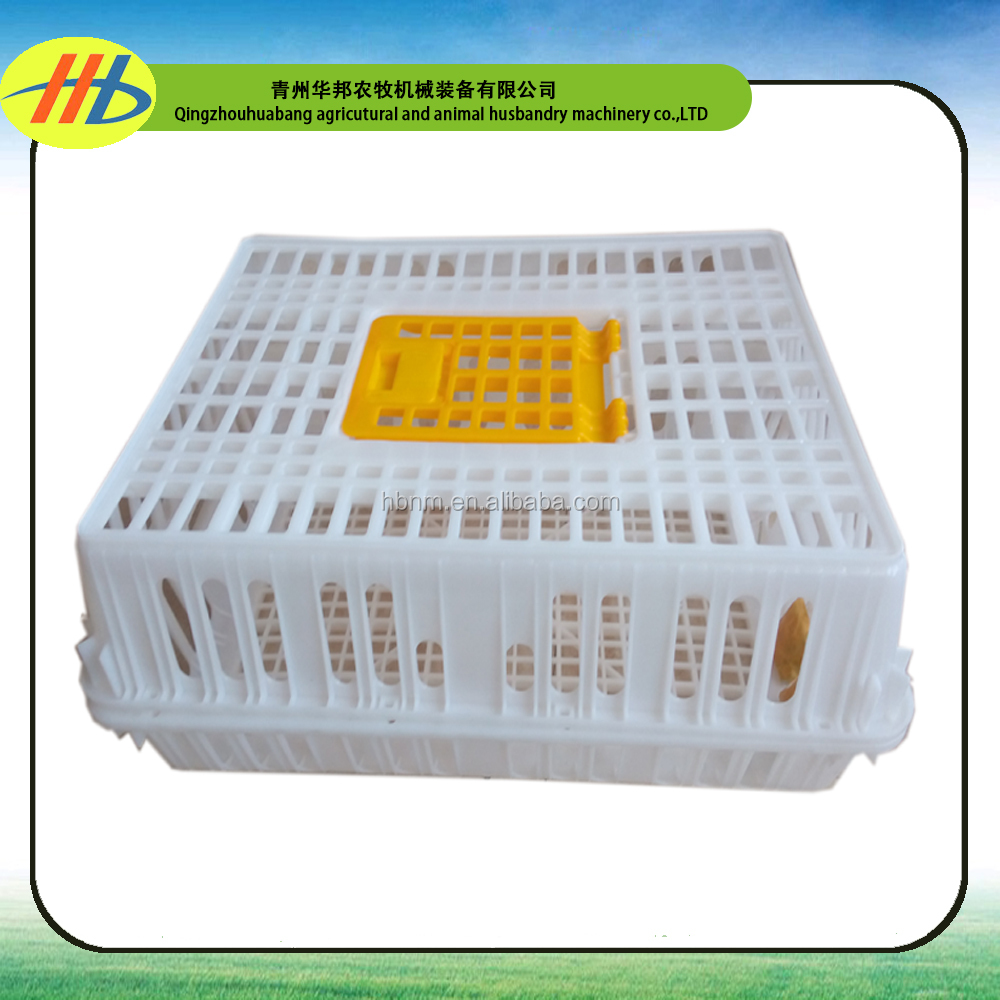 plastic turnover crate for chicken chick broiler layer duck pigeon dove hen