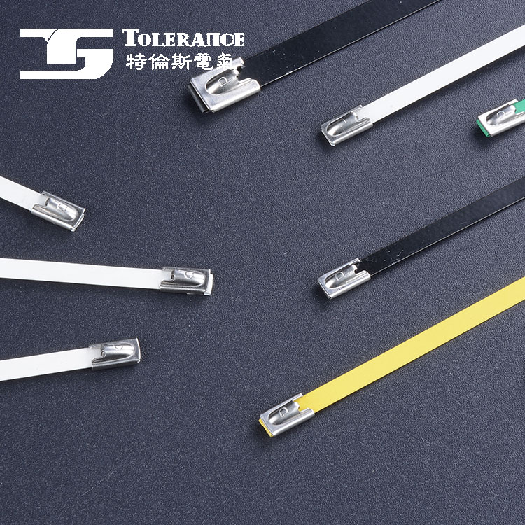 Professional Manufacturer Supplier Stainless Steel Cable Tie Wrap