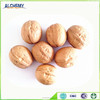 Chinese walnut, nut , cheap walnuts for sale