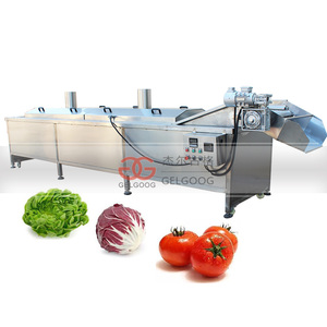 Industrial Fruit Blanch Vegetable Blanching Machine
