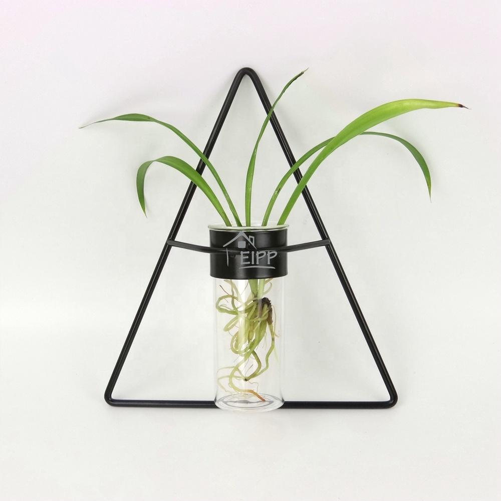 Nieuwe Geometrische Glazen Reageerbuis Ontwerp Vaas Smeedijzeren Glazen Buis Bloem Terrarium Opknoping Voor Lavendel en Hydrocultuur Plant