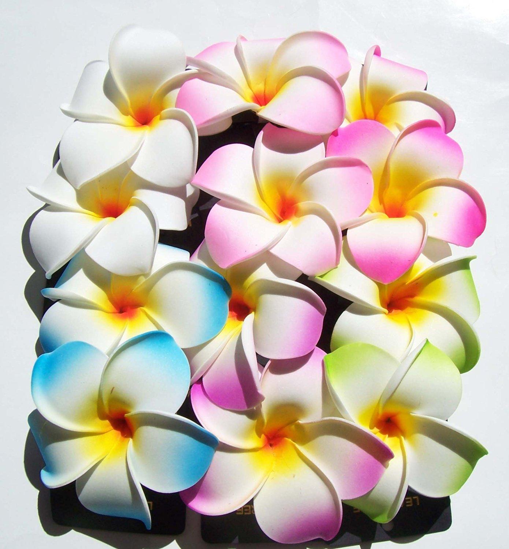 Cheap india hawaiian foam flower hair clips find india hawaiian get quotations set of 12 hawaiian hawaii bridal wedding party plumeria foam flower hair clips izmirmasajfo