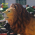 Hot selling large outdoor home & garden decor fiberglass New product life size lion sculpture