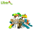 LLDPE Plastic Used Preschool Outdoor Playground/Jungle Gym/Amusement Park Playground