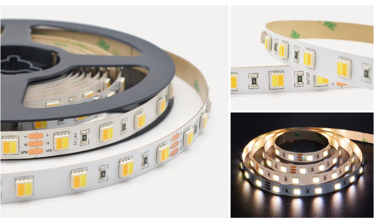 2in1 cct tunable 5050 led strip adjustable with remote optional