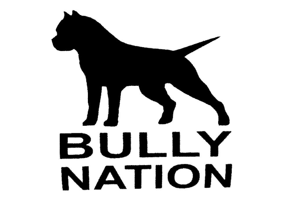 Wholesale 50pcs Lot Hot Sale American Bully Nation Pit