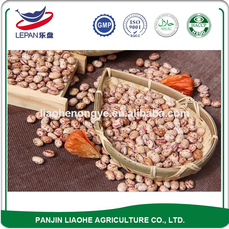 Market Price Common Cultivation Light Speckled Kideny Beans