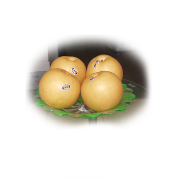 Chinese new fresh organic delicious sweet Fengshui pears