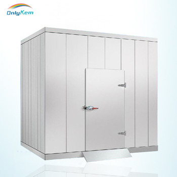 Refrigeration Equipment Cold Room Double Sliding Door