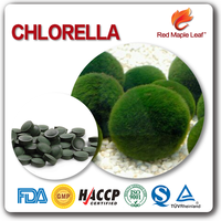 Natural Herbal Supplements GMP Factory Wholesale chlorella Tablets