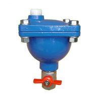 Quick release air valve