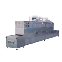Industrial conveyor belt type microwave drying of sesame