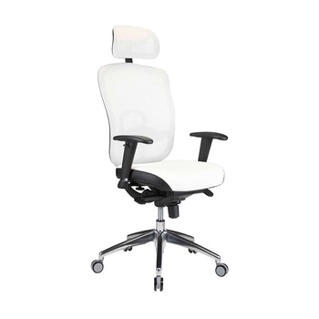 Admirable Zenith Ergonomic High Back Mesh Office Chair With Adjustable Armrest Lumbar Support Headrest Swivel Guest Reception Chairs View White Recliner Chair Theyellowbook Wood Chair Design Ideas Theyellowbookinfo