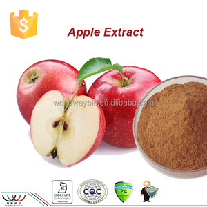 Free samples Natural cosmetic industry material apple polyphenols extract powder apple extract