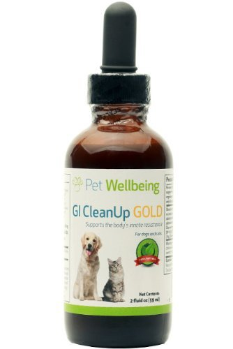 Pet Wellbeing - GI CleanUp Gold for Cat Worms - A Natural, Herbal Supplement for Treatment of Internal Parasites - Helps Maintain a Healthy Gastrointestinal (GI) Tract - 2 oz Liquid Bottle