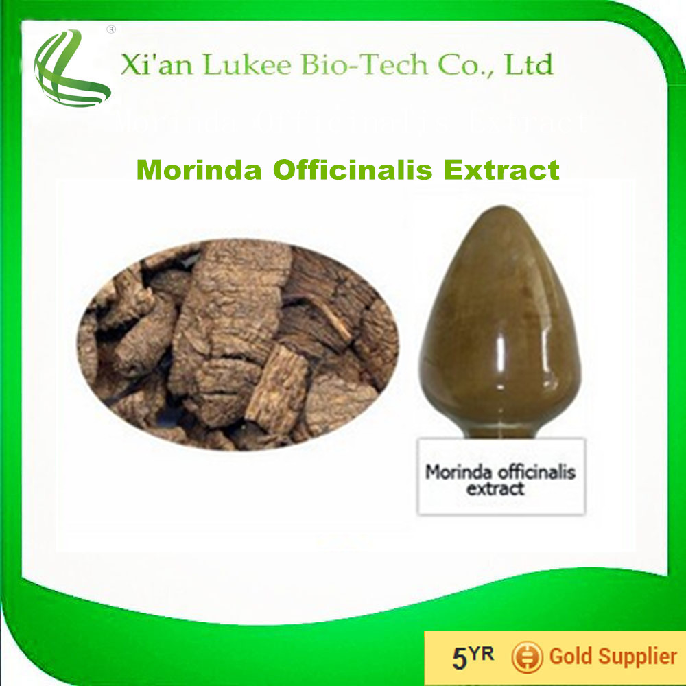 China Supplier Functional Food Ingredients Sex Enhancer Powder Radix Morindae Officinalis Extract