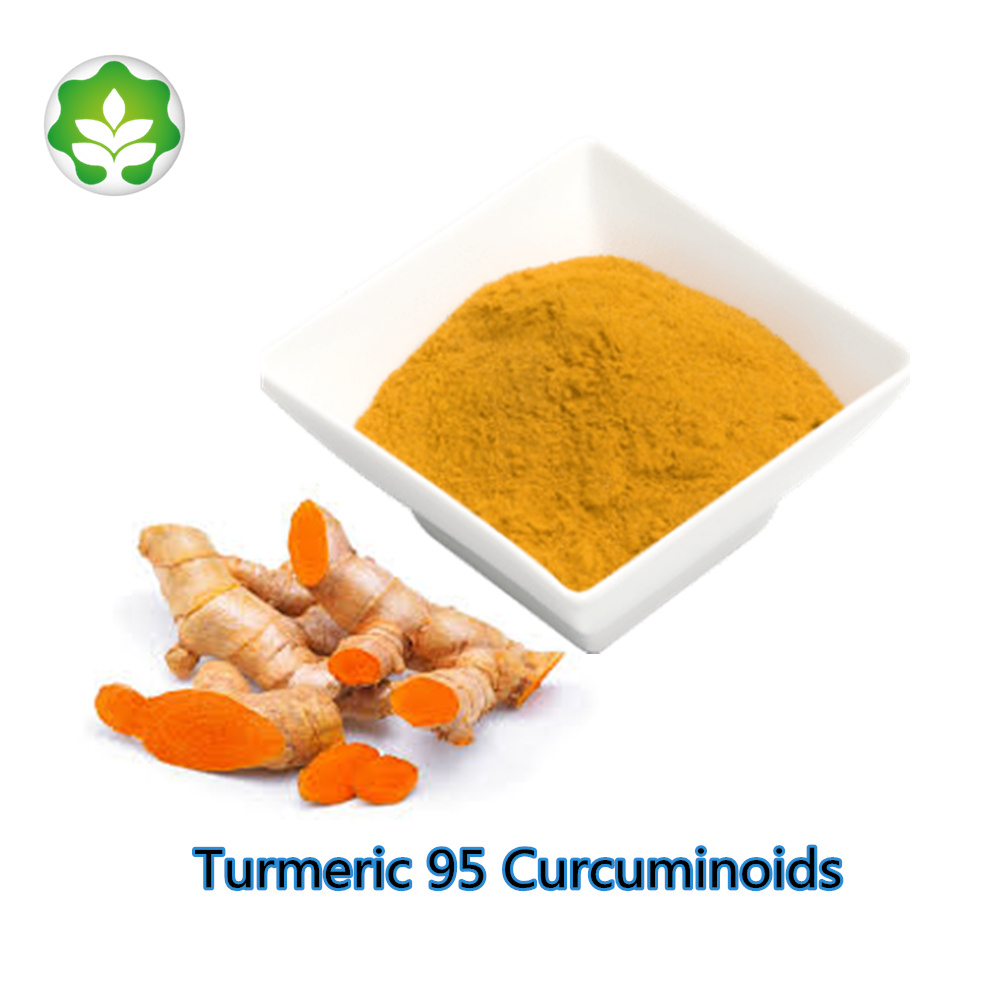herbal-supplement-turmeric-95-curcuminoids-powder-drink.jpg