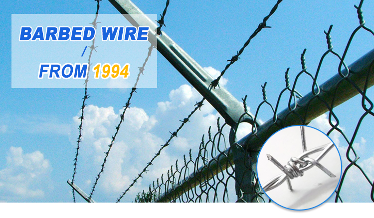 High quality factory price 12 *14 Hot dipped weight barbed wire philippines length per roll