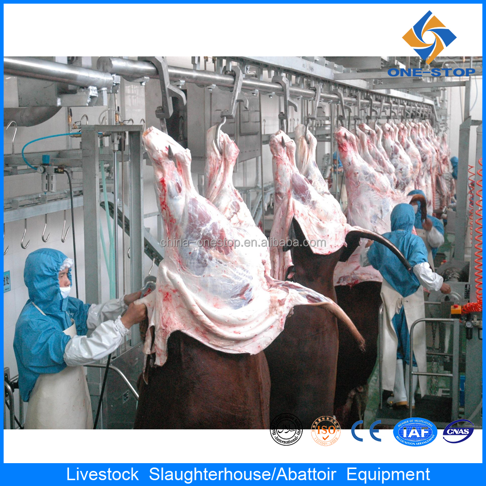 meat processing equipment cattle slaughter equipment butcher equipment
