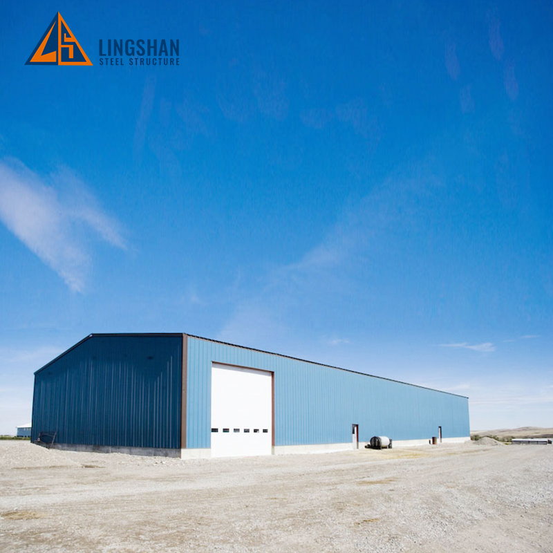 Special offer long span steel frame warehouse building design