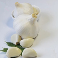 New crop fresh natural pure white garlic for sale