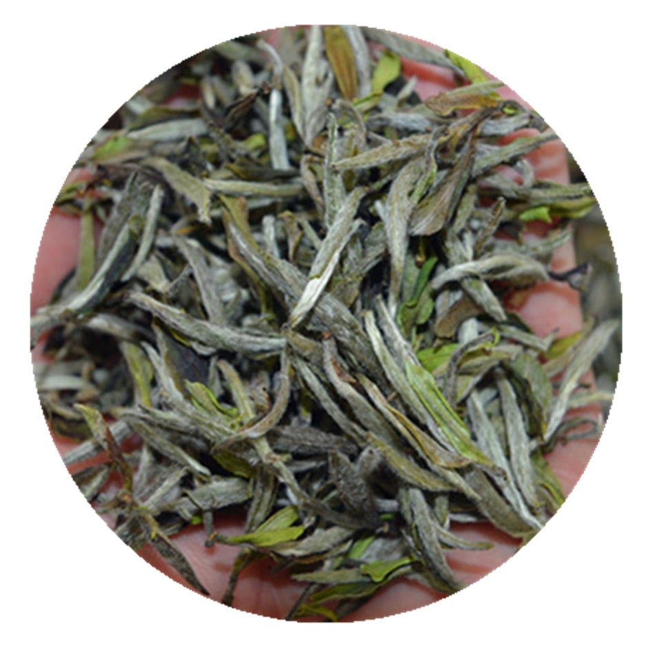 Organic Fuding Full Pekoe White Tea Leaf Bai Mu Dan White Phony Tea - 4uTea | 4uTea.com