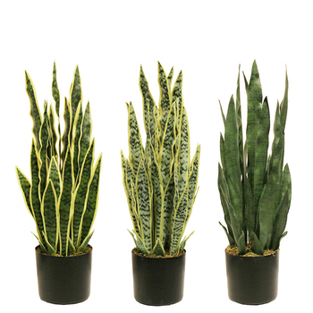 High Quality 37CM four leaves artificial snake plant real touch Artificial Plants artificial succulent for bonsai