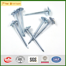 Wholesale SGS TEST ROOFING NAILS BWG9X2.5