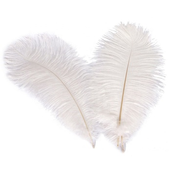 China Manufacturer Factory Directly Cheap White Ostrich Feathers For Sale