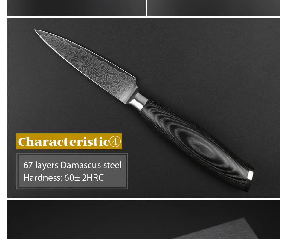 "HTB1CD1pcpHM8KJjSZFwq6AibXXaE - XINZUO 3.5"" inch Paring Knife 67 layers Japan Damascus Steel Peeling Fruit Knife"