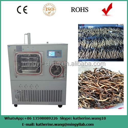 China professional lyophilizer equipment supplier