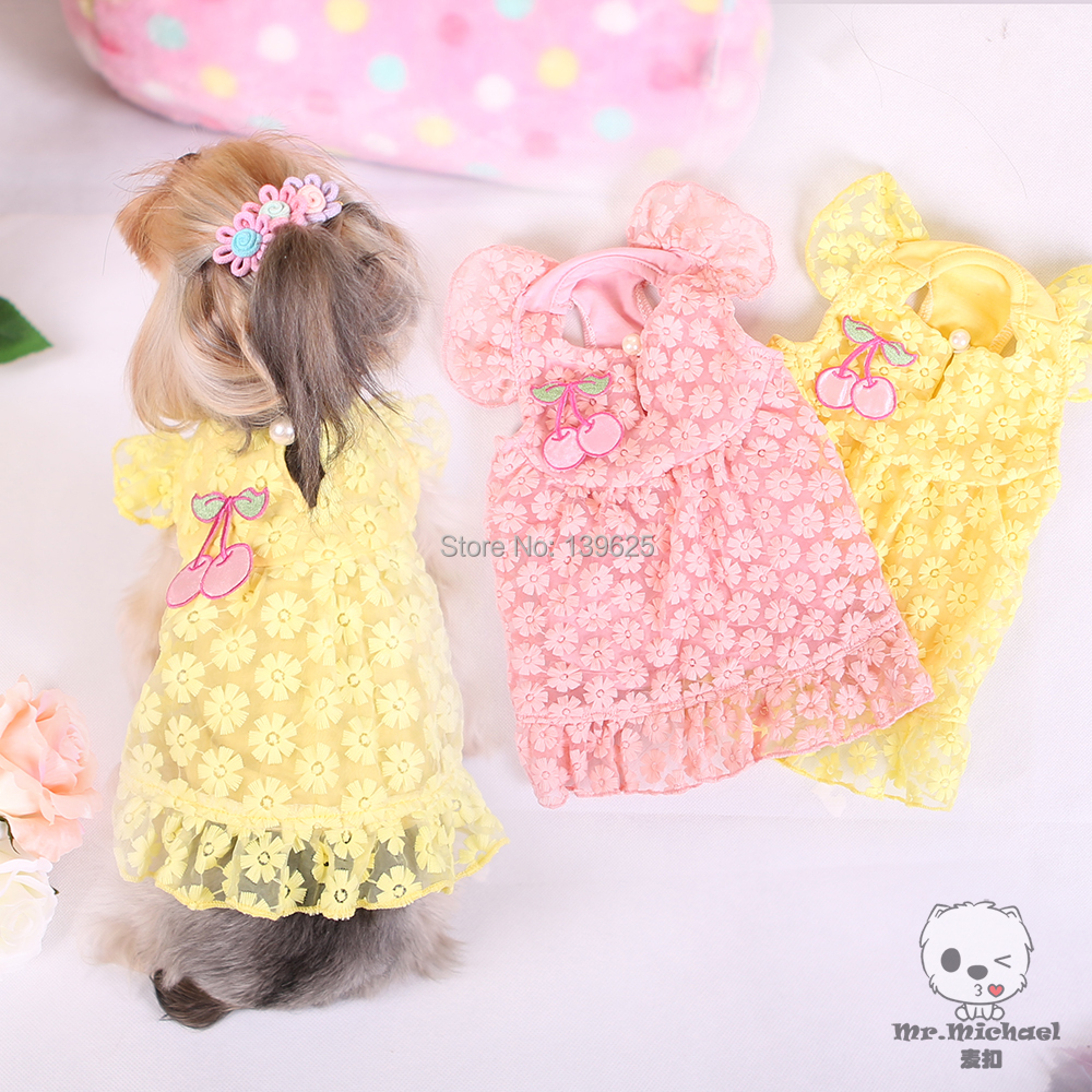 Dog clothes stores