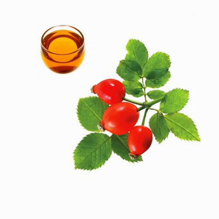 100% Natural Wild Organic Rose Hip Oil with Competitive Price