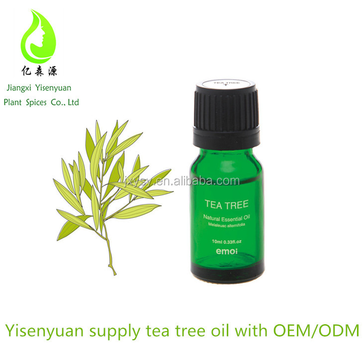 100% Organic And Pure Australia Tea Tree Essential Oil 68647-73-4 Bulk For Skin Care