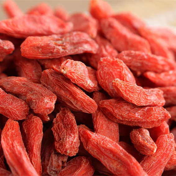 High quality natural berries goji or sale