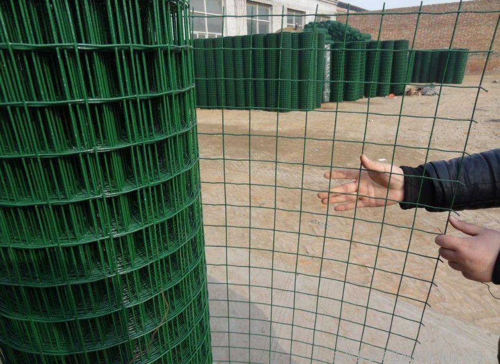 Pvc Coated Home Depot Wire Mesh /welded Wiremesh Roll - Buy Concrete ...