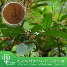 Treatment Prostate Disease Pygeum africanum extract powder