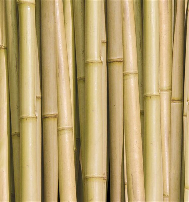 2018 trending products bamboo canes lumber products wholesale