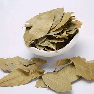 BAY LEAVES / CLEAN AND GOOD SIZE BAY LEAVES / GRADE AAA BAY LEAVES